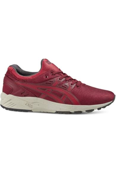 Asics Gel-Kayano Trainer Evo HN512-2523